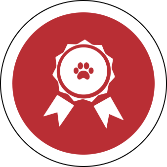 Εξειδίκευση - Πιστοποιήσεις για κούρεμα σκύων, πτυχίο για pet groomers, πτύχιο για dog groomer, dog grooming, πτυχίο European Master Grooming Association